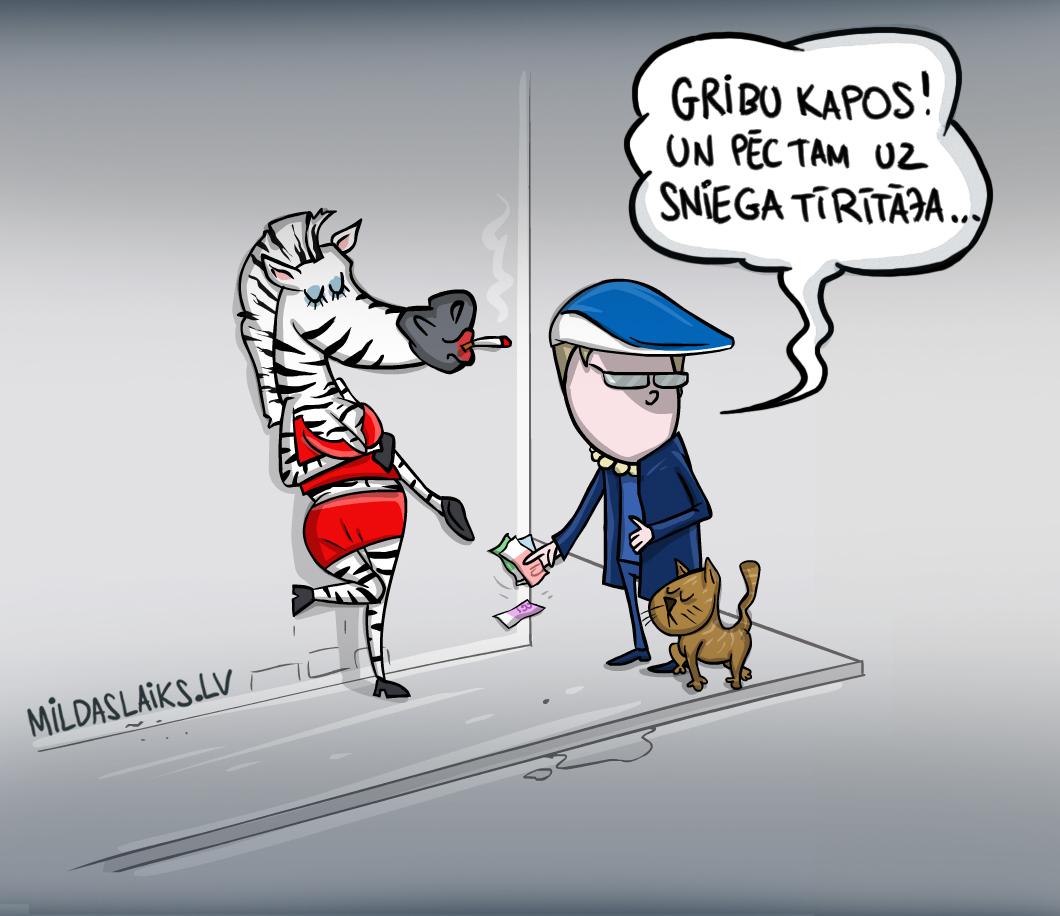 Zebra_usakovs